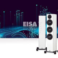 System Audio Legend 40.2 Silverback