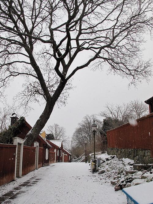 Södermalm è uno dei pochi quartieri della capitale che ha preservato anche l'aspetto originario della città con le tipiche case rosse dipinte alla maniera falu rödfari.