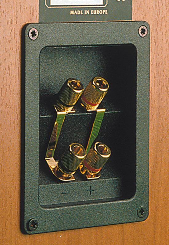 I doppi morsetti di uscita predispongono il pilotaggio per bi-wiring.