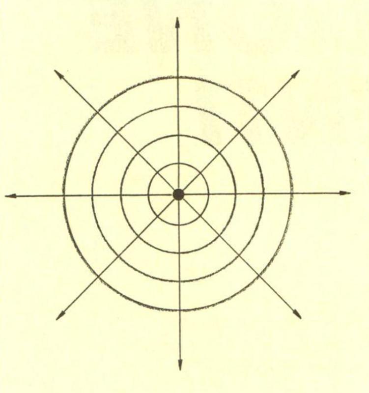 Figura 3 - Una sorgente puntiforme irradia nello spazio in tutte le direzioni. Le onde di pressione che si formano nell'aria hanno quin di forma sferica, e procedono espandendosi dalla sorgente all'intero spazio. Si assume quindi che l'onda si propaghi secondo raggi uscenti dal centro della sorgente stessa e dispo sti radialmente rispetto ad essa.